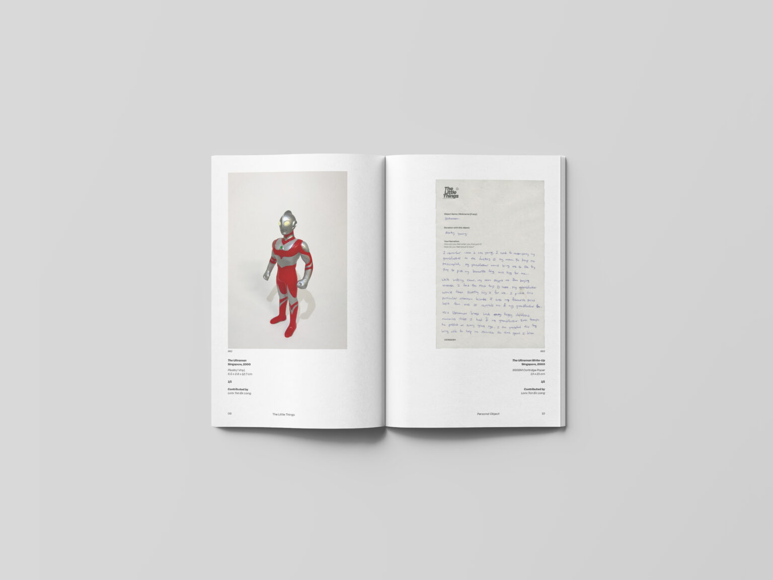 Exhibition Catalogue (Pages)