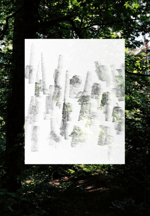 Pencil drawing layered digitally over a photograph taken in Queens Park, Glasgow
